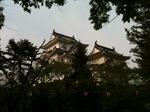 上野城10.05.05.jpg